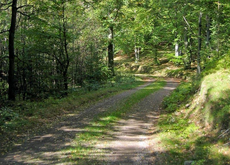Mysiga vandringsvägar kring vår stugby