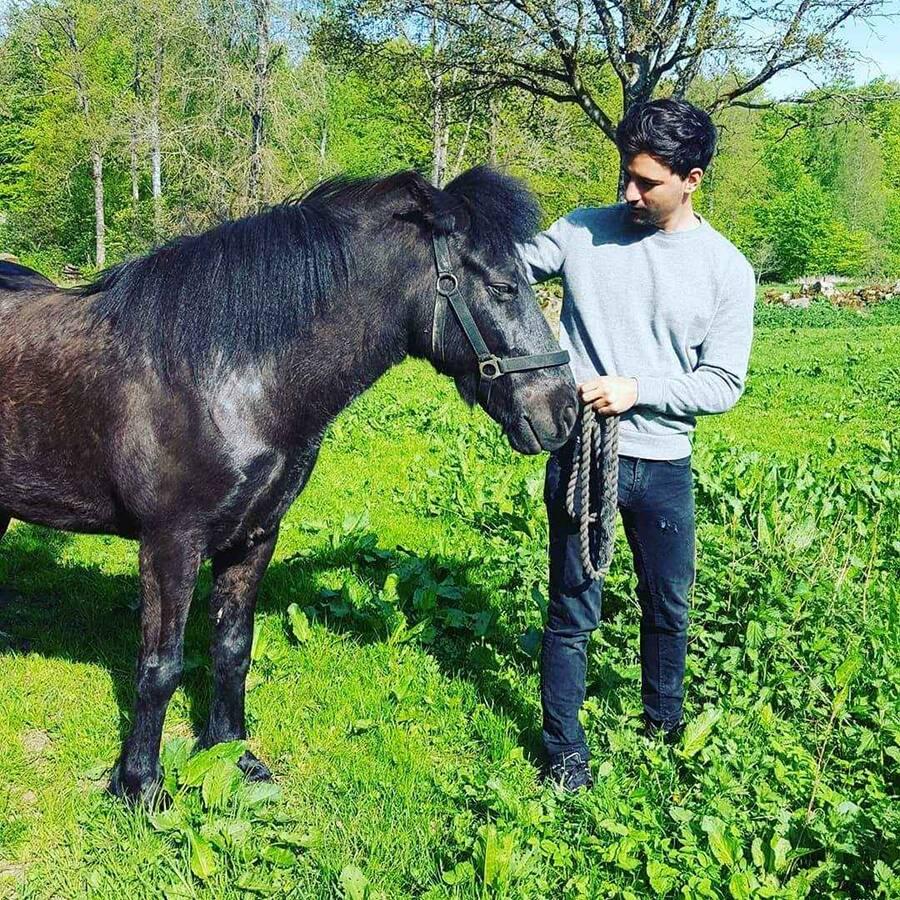 Horse riding on Icelandic horse ridning Islänning Ullstorps stugor skåne
