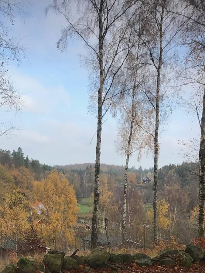 Viewpoint utsiktplats Ullstorps stugor Skåne