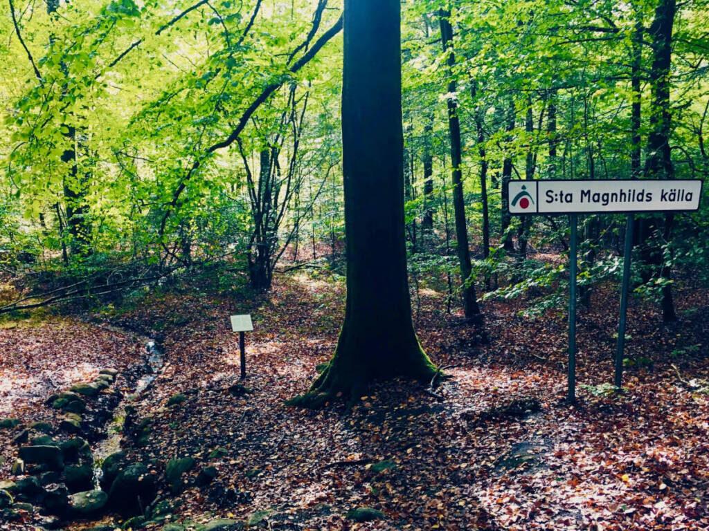 hiking trail ullstorp sweden